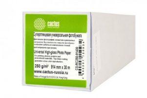 Cactus представляет широкоформатную бумагу для высококлассной полиграфической продукции